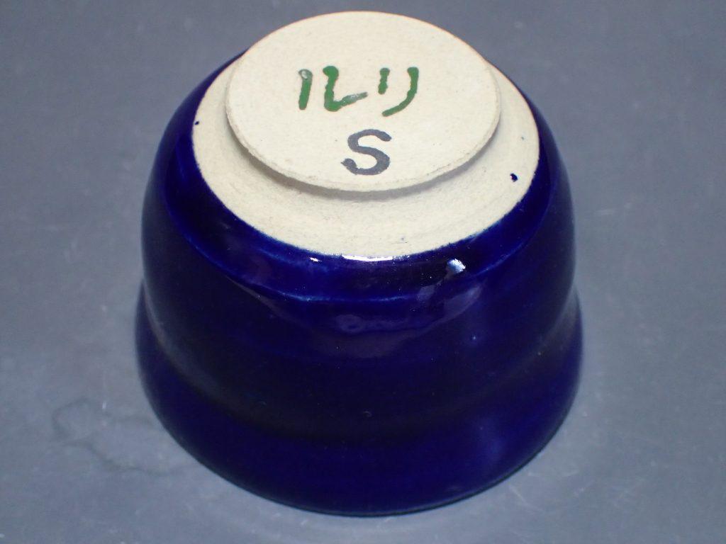 P3100268